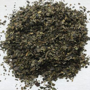 Guyusa-Amazon- herb