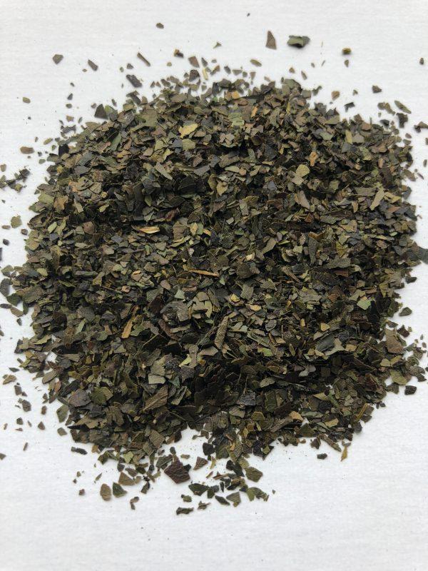 Guyusa-Amazon- herb